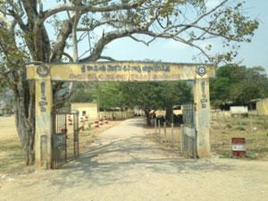 Sri Kanooru Shiva Rao School
